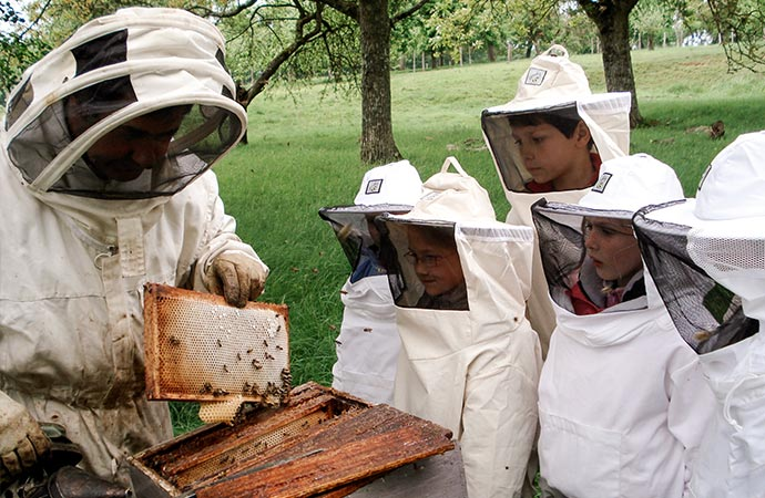 Image activité-rencontre-apiculteur Sur les traces de Molière Voyage Scolaire Côté Découvertes