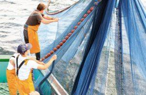 Image marins-pêche théâtre et milieu marin Morbihan Classe de découverte Côté Découvertes