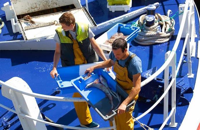 Image marins-pêcheurs Classe de découverte Côté Découvertes