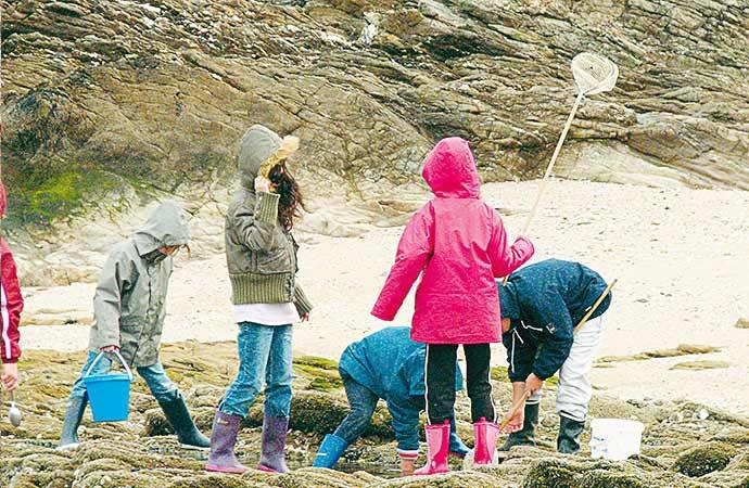 Image pêche-à-pied-enfants Classe de découverte Côté Découvertes