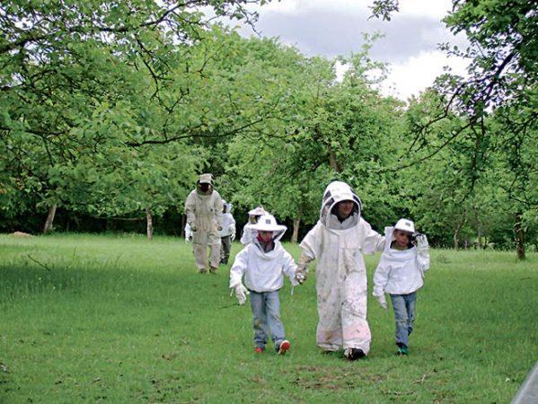 Image apiculteurs Classe de découverte Côté Découvertes