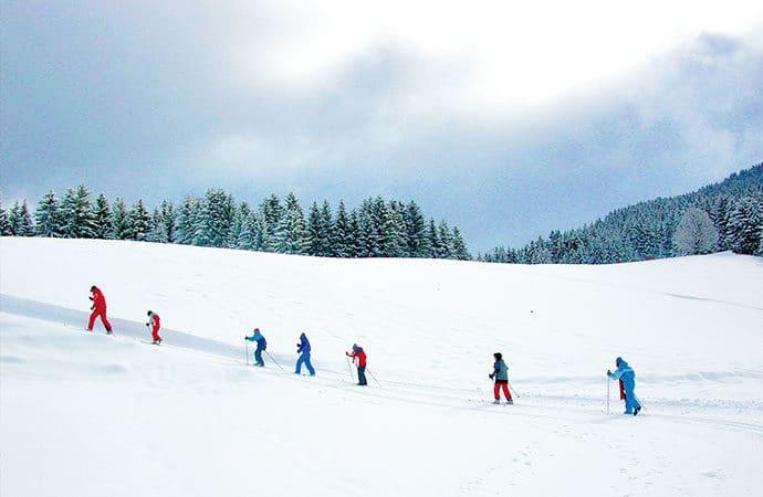 Image ski-de-fond-activité Classes évènements Classe de découverte Côté Découvertes